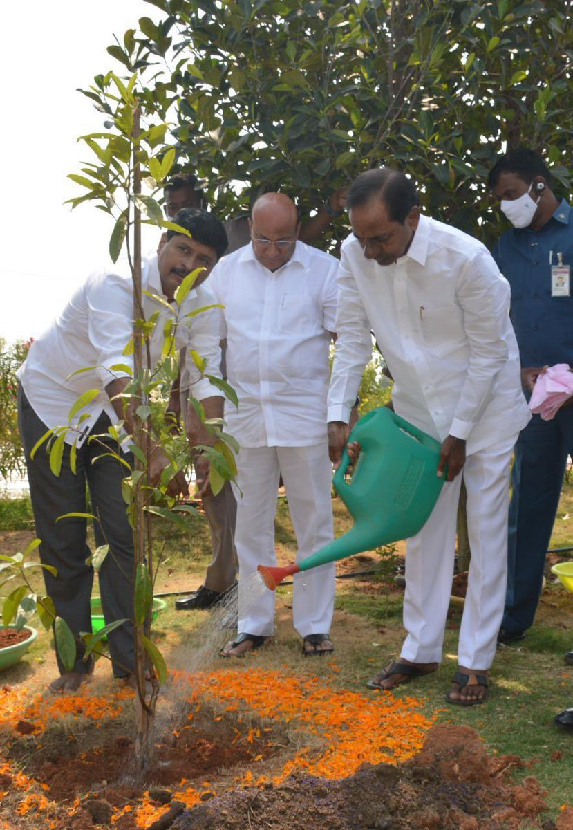 ' Our leader #KCR garu himself participated in #KotiVriksharchana '  Planted #Rudraksha plant traditionally used for prayer beads 🌱🙏  @TelanganaCMO @KTRTRS  @MPsantoshtrs
