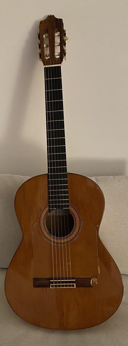 Cuanto más conozco a algunos humanos más me gusta mi guitarra