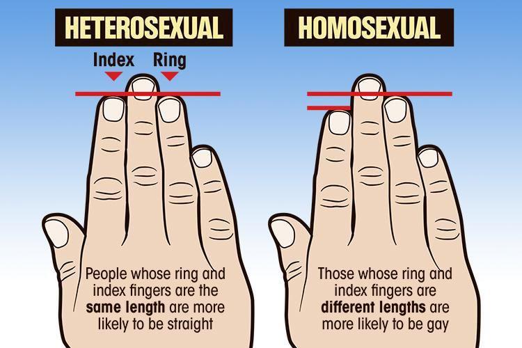 Gay test na hrvatskom