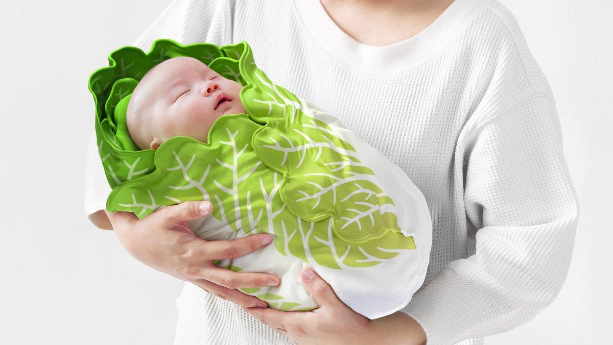 出産祝いにお勧め⁉栄養満点?の白菜のおくるみ