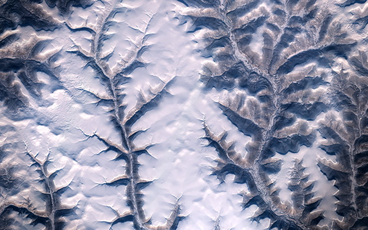 White Collection (2021) | Leaves & Branches 🍂 85x50 km image of smooth transitions while different rivers flow their way and continue shaping the landscape. Random place in #Russia | @CopernicusEU #Sentinel2 🛰️ 2021-02-15 - Full Size -> flic.kr/p/2kCLsHm 🧐 | #EO