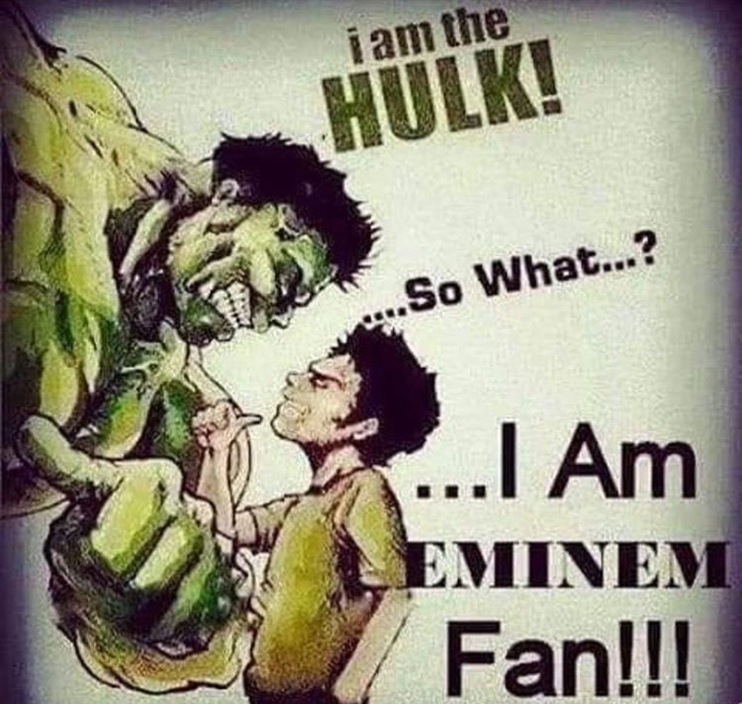 RT @LiminalsSpace: why does the eminem fan in this pic look liek dan from dan vs https://t.co/5NLsAEmZ0l