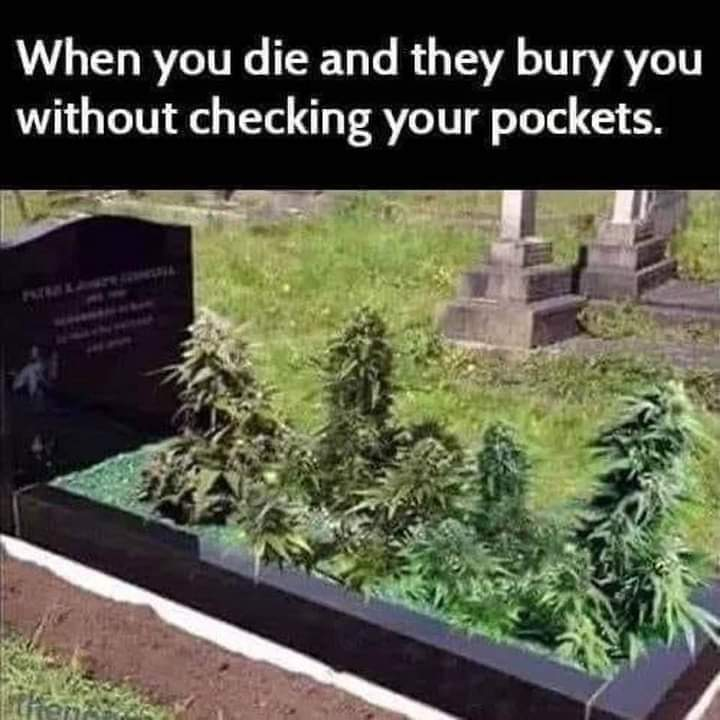 #funny #weedlife #weedstagram #burial #funnymeme #funnydeath #smokepot