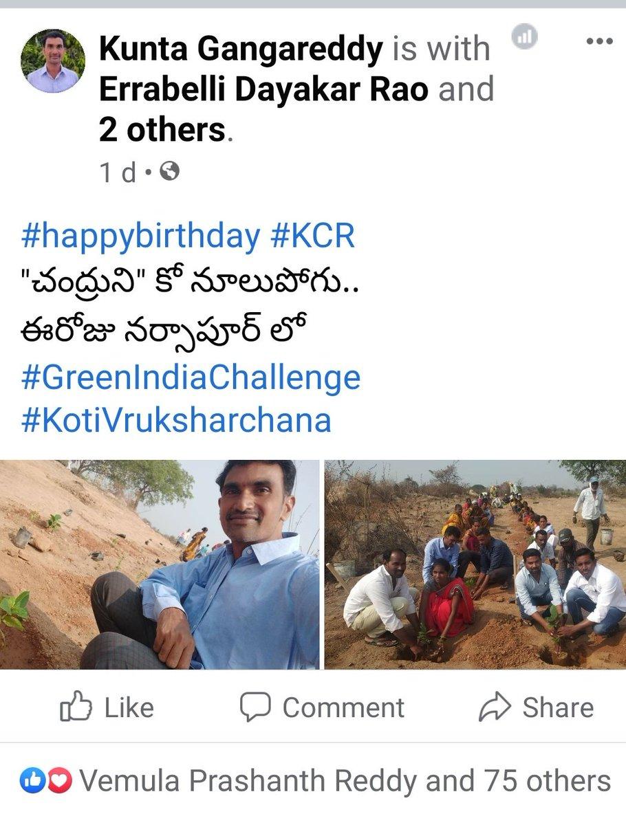 Yesterday My IKP-SERP Employees & SHG Members in #KotiVriksharchana #GreenIndiaChallenge  #HappyBirthdayKCR