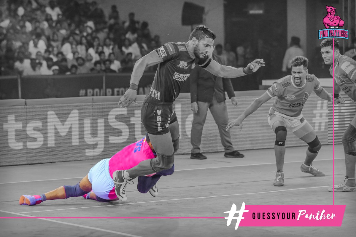 Guess your Panther 🧐🤔  Leave your answer in the comments section below.  #GuessYourPanther #PantherSquad #JaiHanuman #TopCats #JaipurPinkPanthers #JPP #Jaipur #vivoprokabaddi