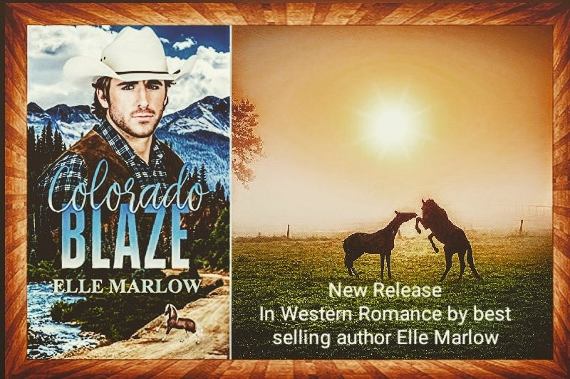 An echo comes and goes but it is never truly forgotten. But when the barrel racing star has her champion horses stolen will Blaze sacrifice his heart to help her?  #fridaymorning  #FridayReads #KindleUnlimited  #kindle #romancenovels  #paperback https://t.co/lNnzXqIZMt