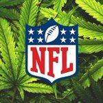 Image for the Tweet beginning: NFL Explores How Marijuana And