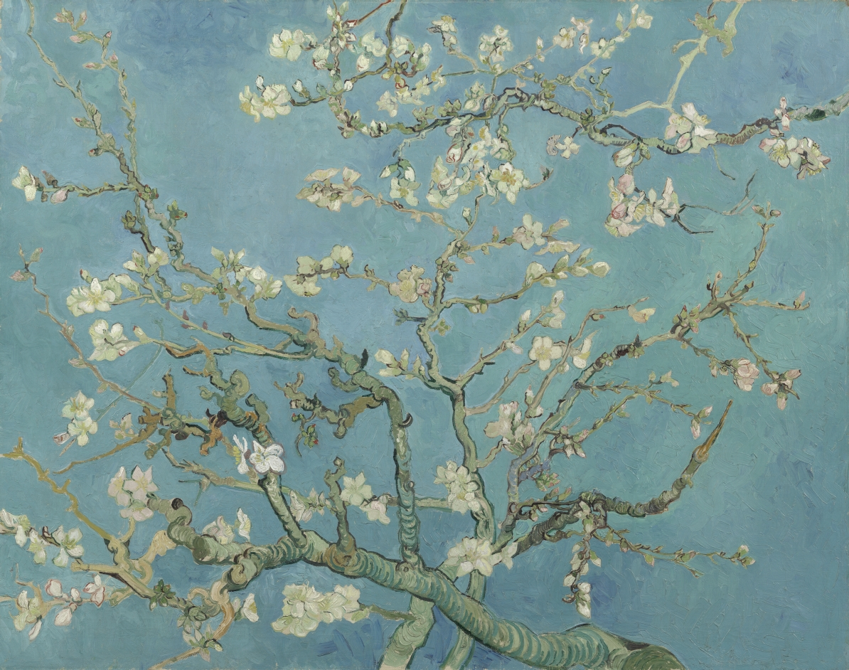 Take the time to properly look at Almond Blossom. Which three words come to mind? Perhaps a feeling? Does a particular detail catch your eye? Something about the colour, or the flowers? https://t.co/bYeZL8UBUv