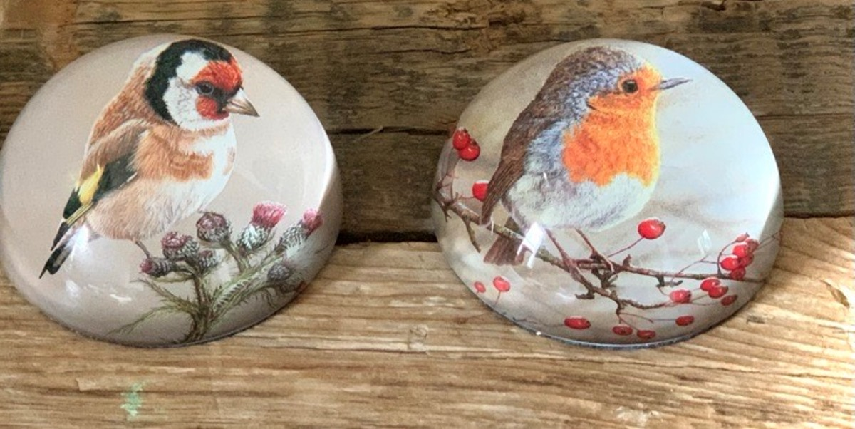 Brighten up your home office or studio with these gorgeous glass paperweights 🐦 Just £19.99 each, these make a perfect gift for a wildlife lover. Get yours here 👉
