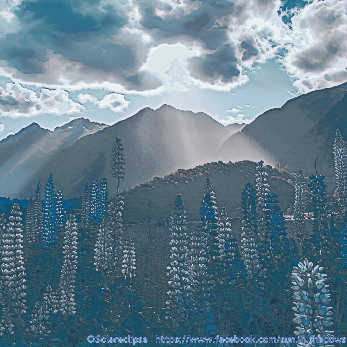 Something In The Air II Digital Art created via Convolutional Neural Networks and Deep Learning  #suninshadow #lupine #bloom #blossom #sun #sunshine #summer #nature #landscape #sky #clouds #artwork #painting #digitalpainting #machinelearning #deeplearning