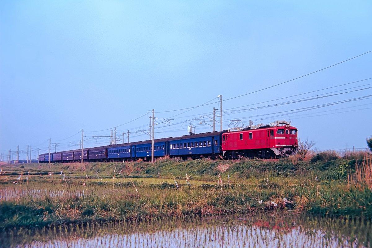 東北 本線 運行 状況