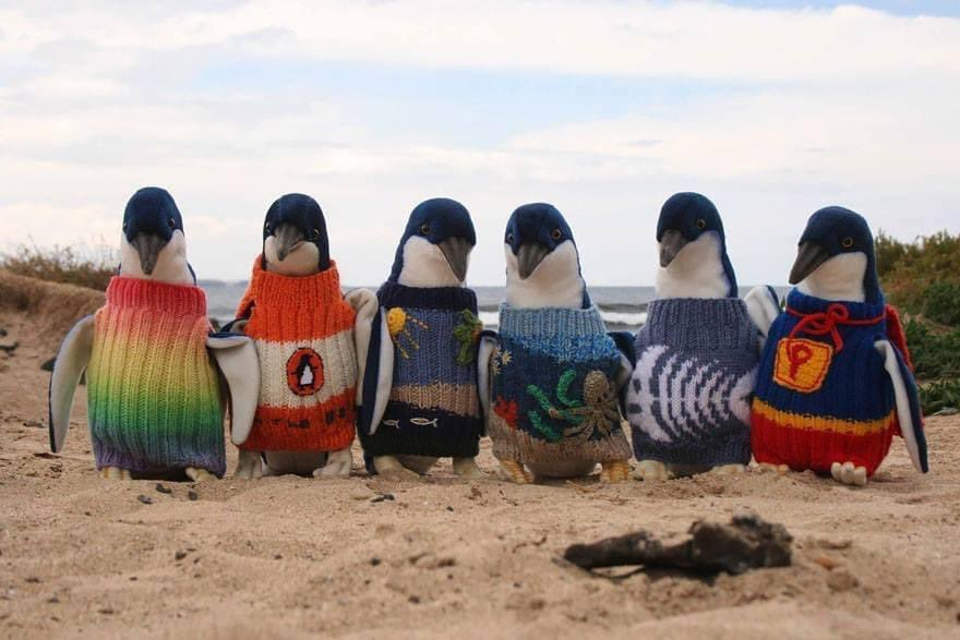 Just read about Australia's oldest man. He's called Alfie Dates, he's 109 and he knits really lovely tiny sweaters for injured penguins.