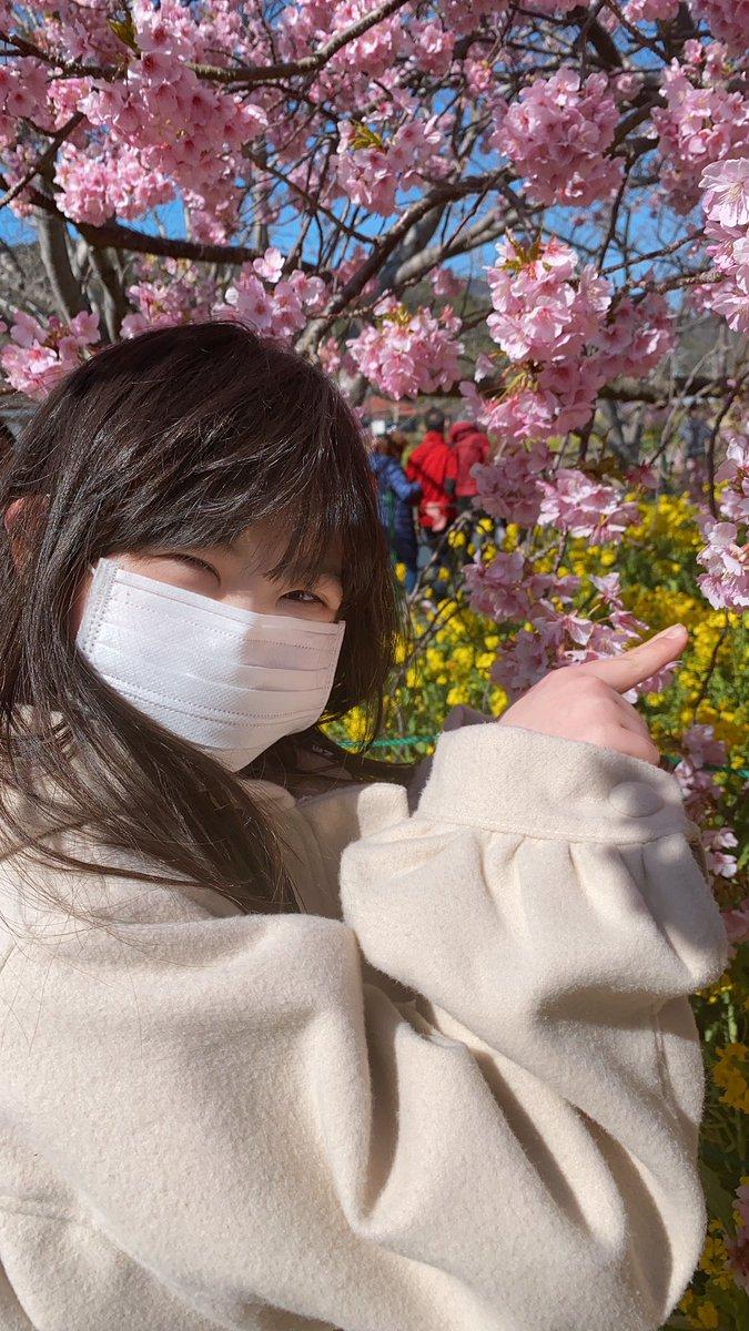 桜 ダウン症 インスタ 菜 モデル