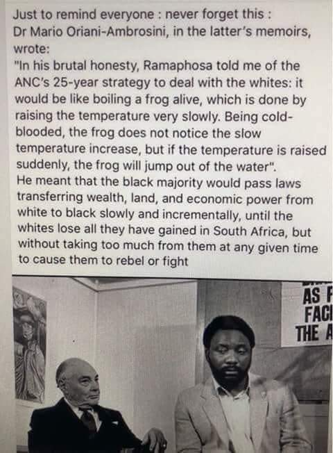 Ramaphosa thought the frogs were dead already. Sorry to disappoint you Mr President. We are very much still alive. You positioned yourself for the final kill and underestimated our resilience. #Trumpcard #notonmywatch