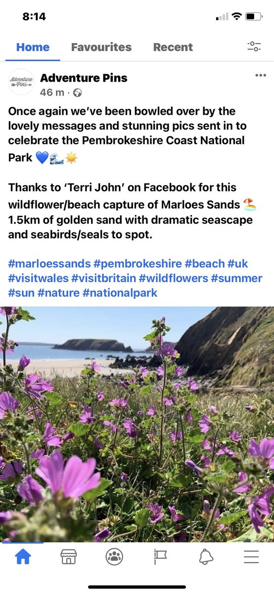 My fave pic of my home beach #MarloesSands was chosen 🙂 toon this photo last year (June2020) 🙂 https://t.co/LqEMdYiP1v
