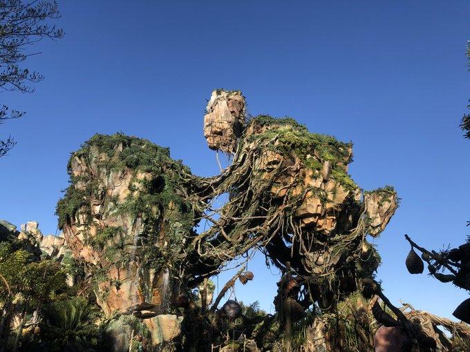 il parait que      Animal Kingdom a un Groot géant caché à la vue de tous EuwNVofWQAU_-h1?format=jpg&name=small