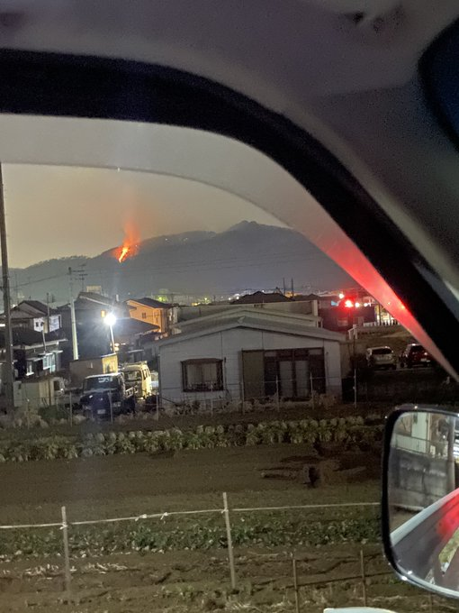 崖山 火事 両 山火事で被害にあった足利市の両崖山復興プロジェクト