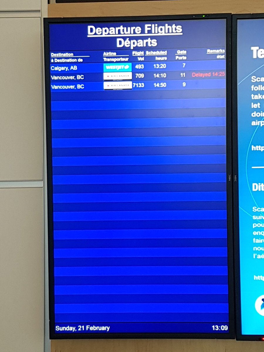 busy day at the airport ...