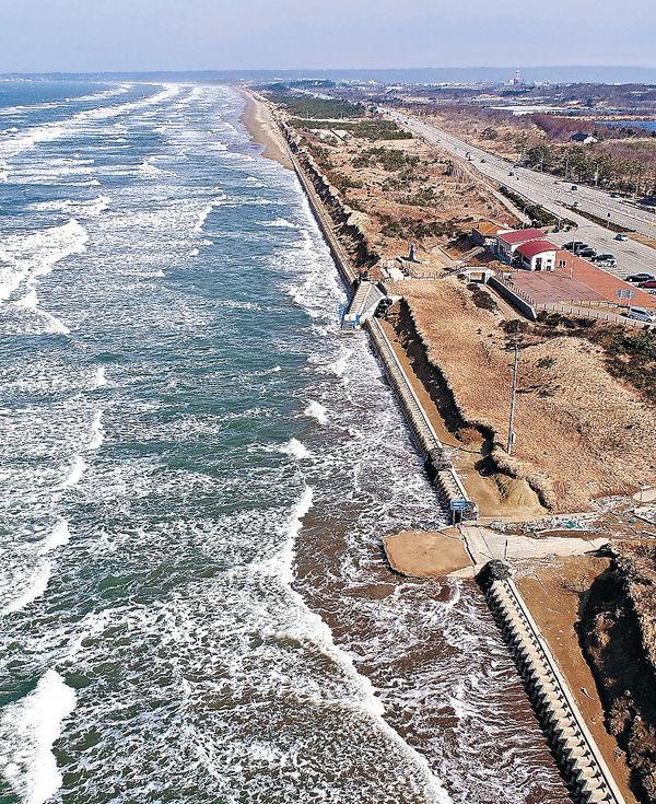 国内で唯一、車で走行できる砂浜である羽咋市と宝達志水町の「千里浜なぎさドライブウェイ」の一部が数百㍍にわたり、波による浸食で21日までに消えた。全線約8キロのドライブウェイは昨年12月13日から不通となっており、復旧のめどは立っていない。#北國新聞