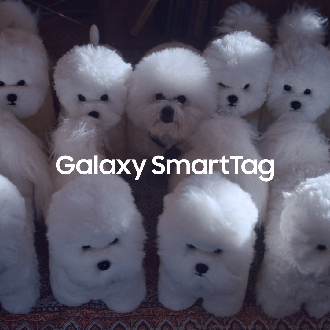 Keep tabs on your furry friend by simply attaching #GalaxySmartTag to him/her.  Learn more: