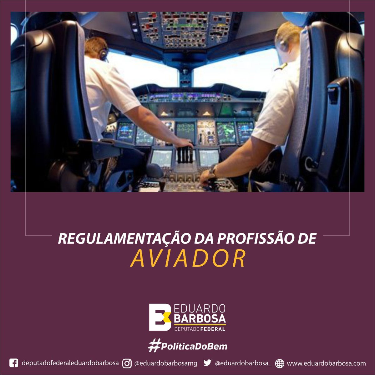Capa: Apresentei o PL 602/2021 que dispõe sobre o exercício da profissão de Aviador. A...
