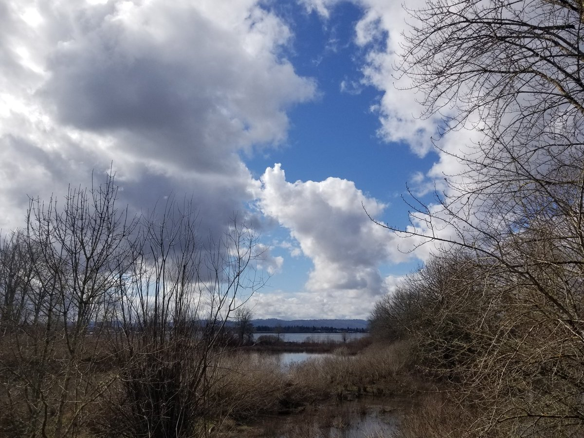 Very picturesque #clouds on my #VanWa riverwalk. #nature 8 miles #fitness #selfcare