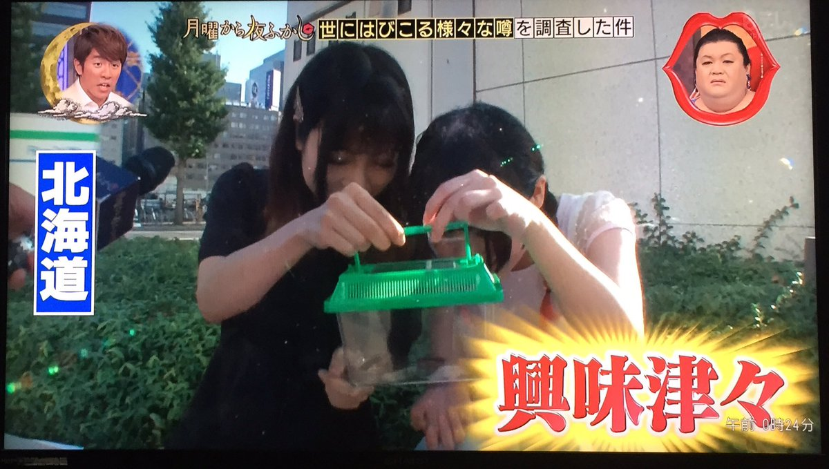 ゴキブリを見たことが無い北海道民は?ゴキブリに興味津々w