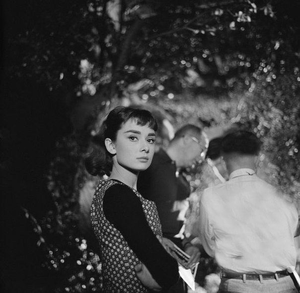 RT @SoAudreyHepburn: Audrey Hepburn photographed by Mark Shaw on the set of Sabrina, 1953 https://t.co/eecfGLH8KO
