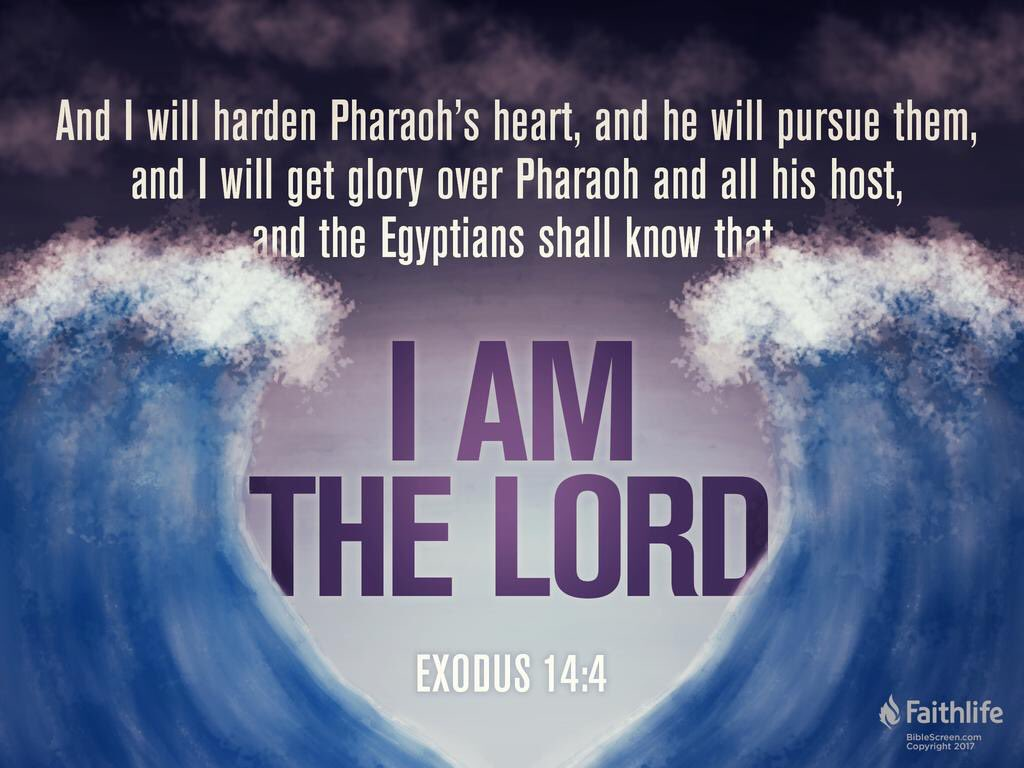 We're reading Exodus 14 this Sunday. Join us as we continue through the Bible one chapter per day!  #bible #Jesus #thedayoftheword #onechapterperday #devotional #SundayMorning
