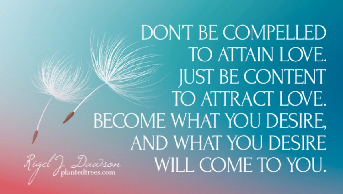 Don't be compelled to attain love. Just be content to attract love. Become what you desire, and what you desire will come to you.  #PlantedTrees #MotivationalQuotes #Quoteoftheday #Quotestoliveby #Wisdom #Love #Inspiration #SundayMotivation