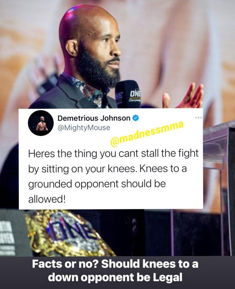 No they shouldn't be allowed. No offence intended DJ but knees to the head for FWs are not the same a knees to the heads for bigger weight classes. If guys like Rumble start kneeing downed opponents in the head... there are gonna be a lot of short careers and more CTE. #ufc #mma