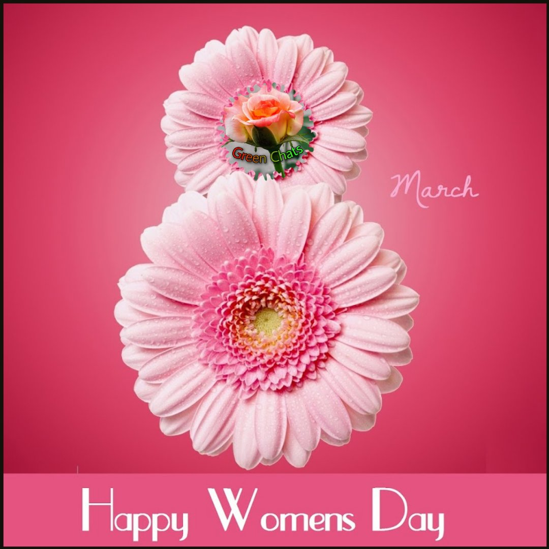 """Where there is a woman, there is magic."" – Ntozake Shange 💃#greenchats 💃#women   💃#gardener   💃#mom  💃#feminism  💃#india 💃#internationalwomensday 💃#womensday2021 💃#gardening 💃#nurturing   💃#sapling 💃#babyplant 💃#love   💃#care    💃#health     💃#girls     💃#bhfyp"