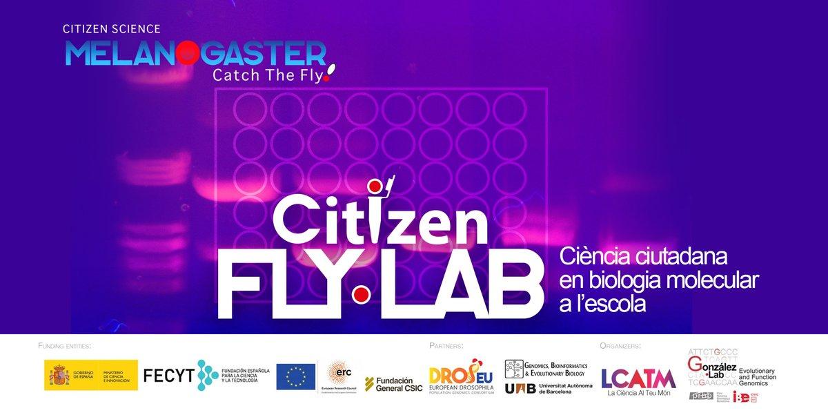 test Twitter Media - Obrim la convocatòria de participació de #CitizenFlyLab de #MelanogasterCTF #CiènciaCiutadana en #Biologia Molecular a #ESO i #Batxillerat  👩🔬🧪🧬 👉https://t.co/u4Tdr24GhL https://t.co/JtCs9WqrWO