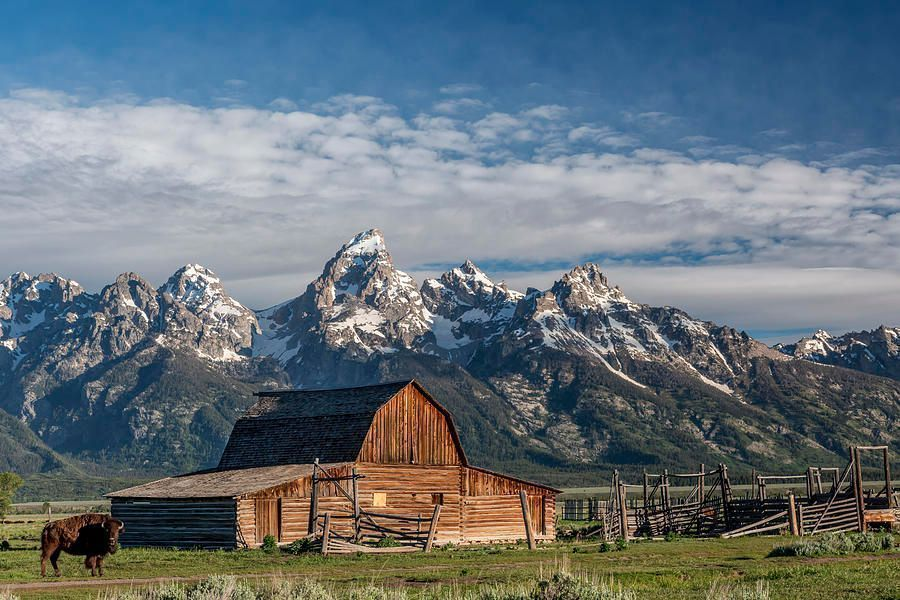 Art for the eyes!  #amazing #creative #photooftheday #naturelovers  #artworks #art #artistry #montana #tetons #travel