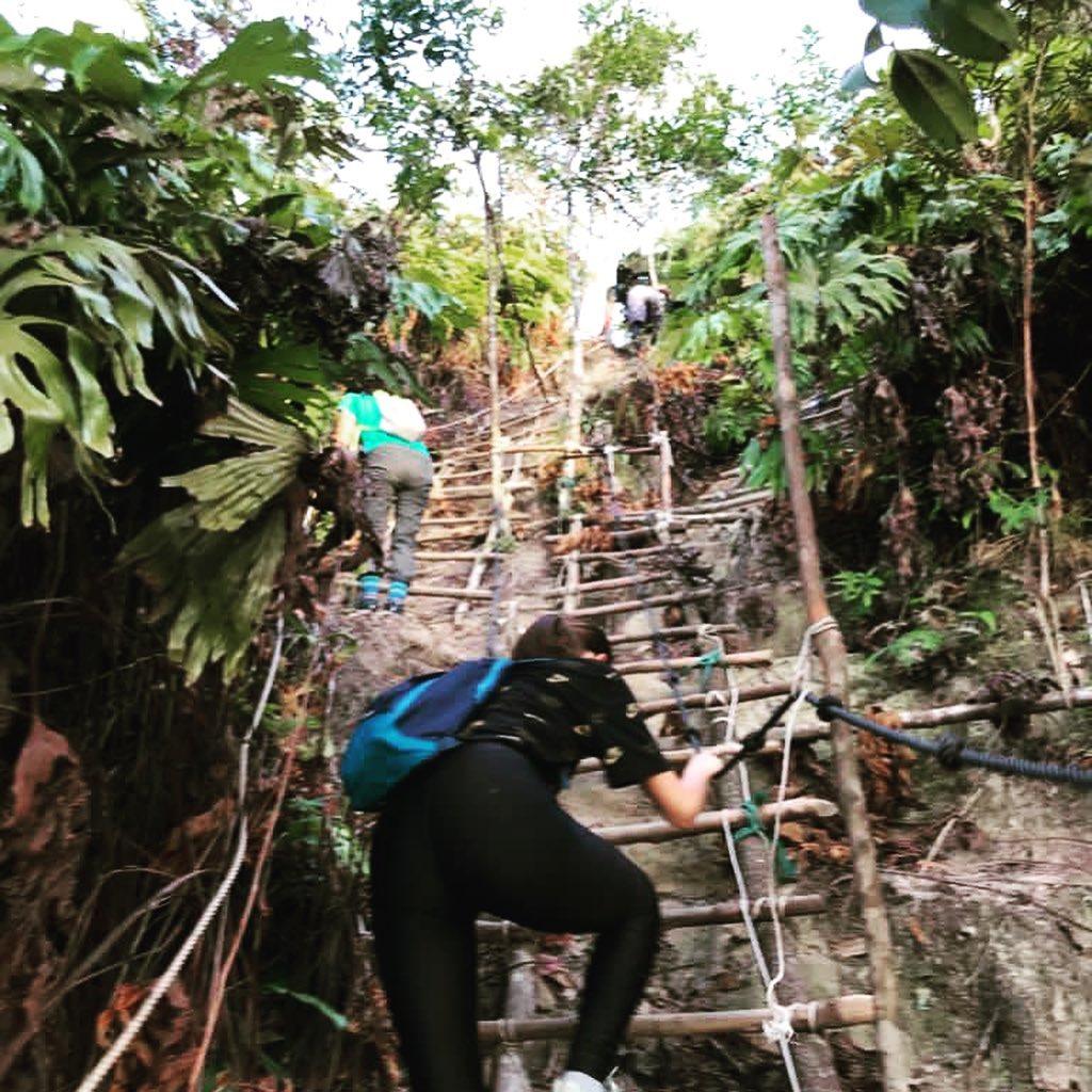 Climbing up to Bukit Saeh (Saeh Hill), Brunei-Muara-District, #Brunei. Photo: rainforestkayaker. #Borneo #nature