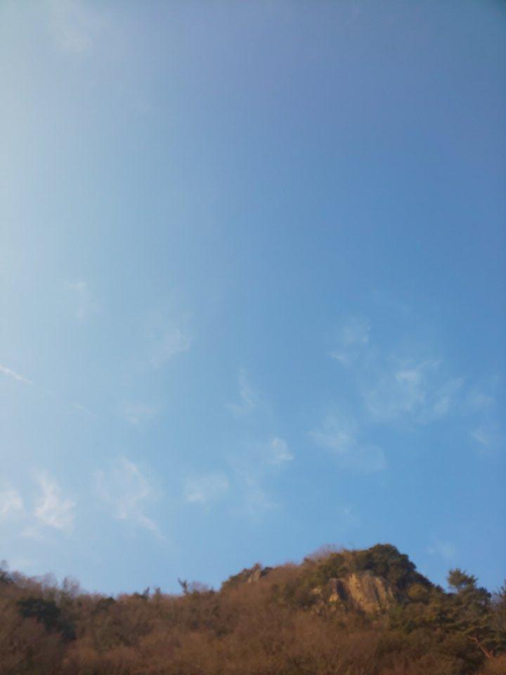 今日の空3 #mysky #sky #sorasuki #ソラモノ写真館 #飛行機雲 #冬枯れ