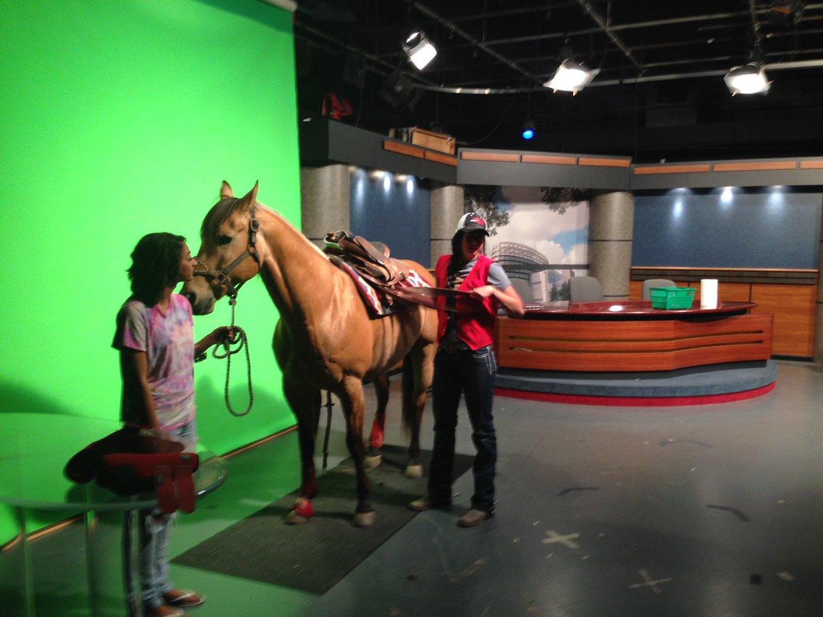 @KimKMPH @DirectorCarey How bout a studio horse?