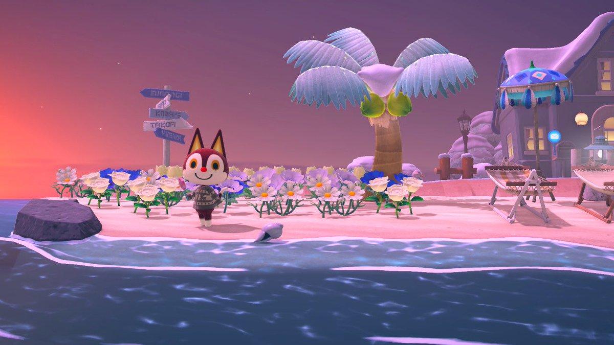 test ツイッターメディア - 昨日までは緑が恋しかったけど、今朝あつ森起動したら、やっぱり雪景色よかったな〜と思ってしまった🥺 雪の島の全体的な色合いが自分好みでした😌特に砂浜の色。ちょっと白っぽかったよね🕊 #どうぶつの森 https://t.co/VGxnvCicts