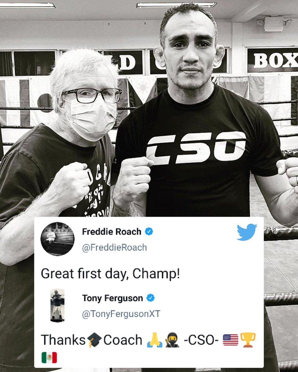 El Cucuy is now working with renowned boxing coach Freddie Roach 🥊 (via @TonyFergusonXT, @FreddieRoach) https://t.co/RFZclgjQ9P