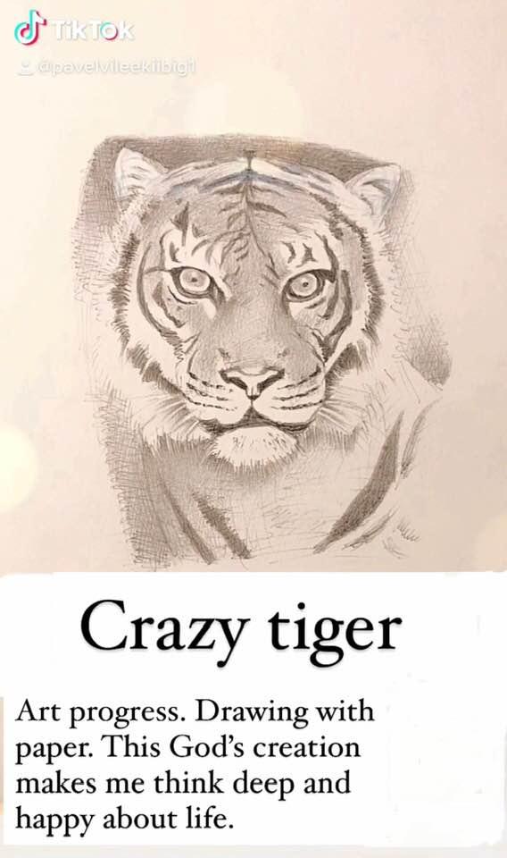 Drawing today. #drawing #animal #TigerWoodsCrash #TigerHBO #beauty #news #crazy #eyes