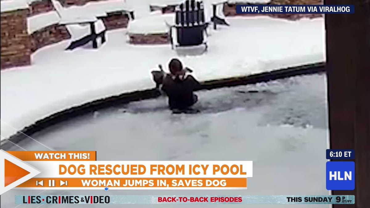 #WatchThis! A dog owner in Tennessee wasted no time jumping into a frozen pool to save her dog, Sid, who was stuck under a sheet of ice: