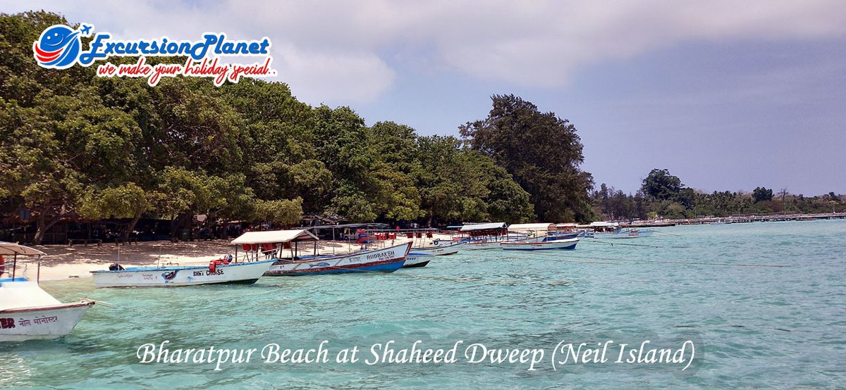 Bharatpur Beach, popularly known as the Coral Kingdom of Andaman, is a gorgeous white sand beach, fringed with palm trees with turquoise crystal clear waters. #andamanandnicobarislands #travelblogger #Holidays #adventure #beach #B2B #b2bmarketing ✈ @excursionplane1
