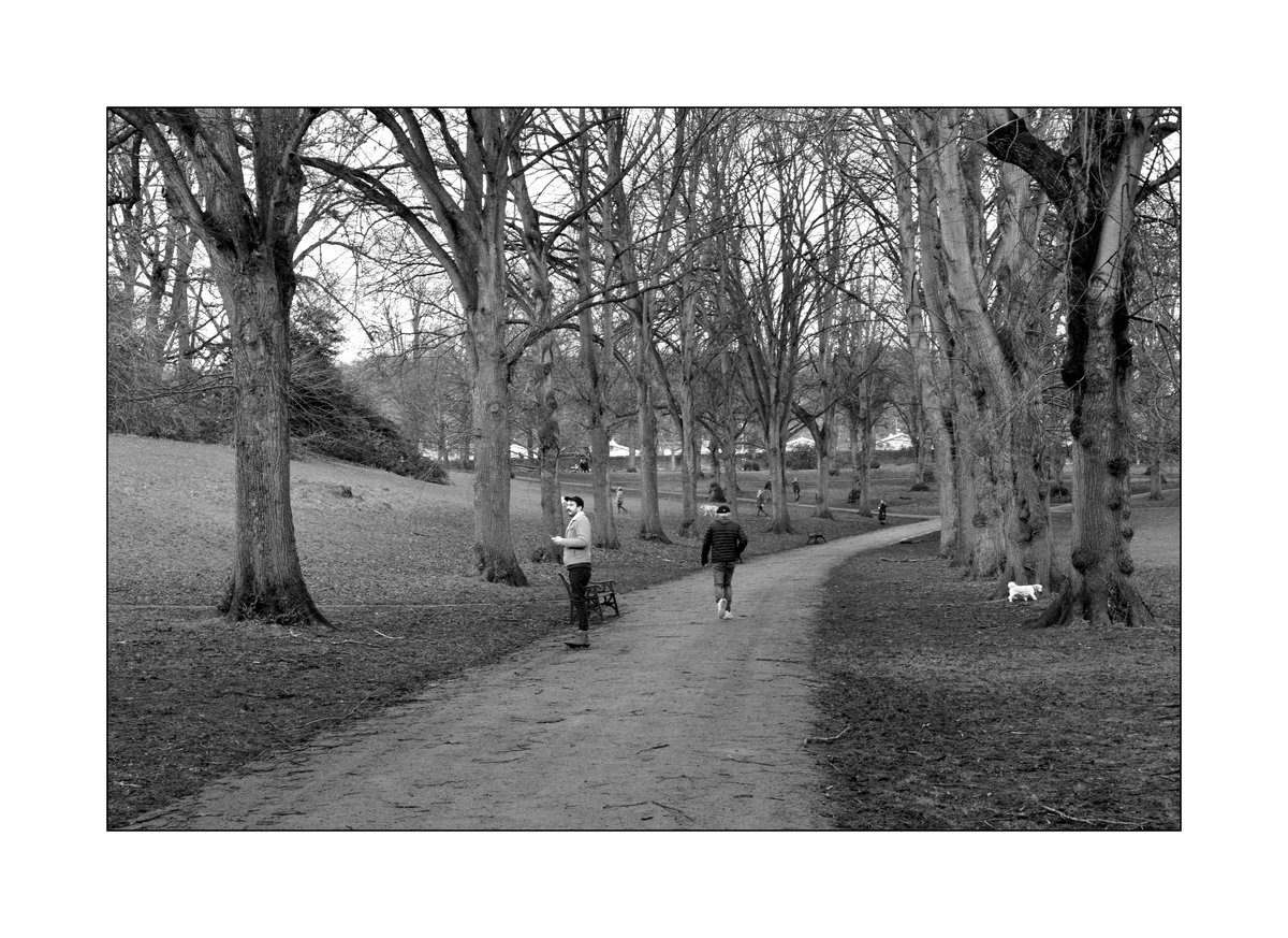 'Directions' The comings and goings of people walking, during 'LockDown', in Ashcombe Park, Weston-super-Mare, Somerset, UK. #0neeye0pen #lifethruaviewfinder #blackandwhitephotography #AshcombePark #dogs #people #walkers #park #parkland #mobilephone