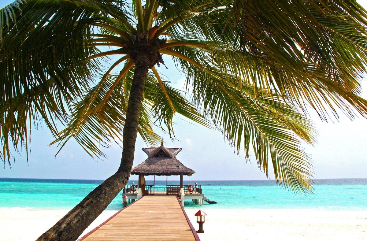 When social distancing meets paradise. 😍 #TrvlTasteTour #Travel #Taste #Tour #Beach #Vacation  #Paradise