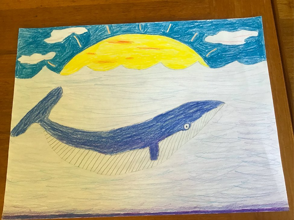 Art club students drawing whales to celebrate World Whale Day! Inspired by <a target='_blank' href='http://twitter.com/OliverJeffers'>@OliverJeffers</a> and the many other fabulous artists who participated! <a target='_blank' href='http://twitter.com/APS_FleetES'>@APS_FleetES</a> <a target='_blank' href='http://twitter.com/APSArts'>@APSArts</a> <a target='_blank' href='https://t.co/UweHSH1Hrt'>https://t.co/UweHSH1Hrt</a>