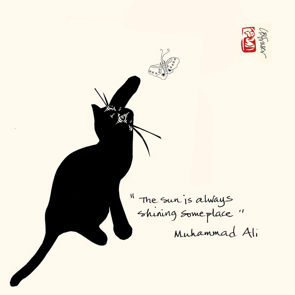 #BlackHistoryMonth #MuhammadAli #Sunshine #Quotations #Quotes #Philantrapist #Activist #Butterfly #AmericanHeartMonth #BHM #Sun #Cat #Art #Collage #Whiskers #CatArt