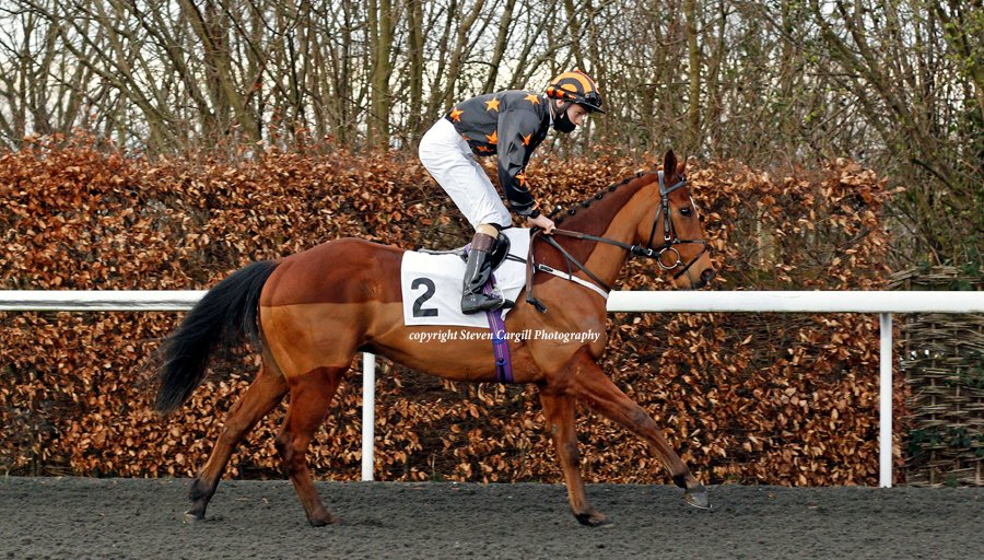 3rd win for gelding ELUSIVE TREAT @McsweeneyOisin in 6f 3yo handicap @kemptonparkrace last night for @DarleyAus Sepoy @RichardFahey