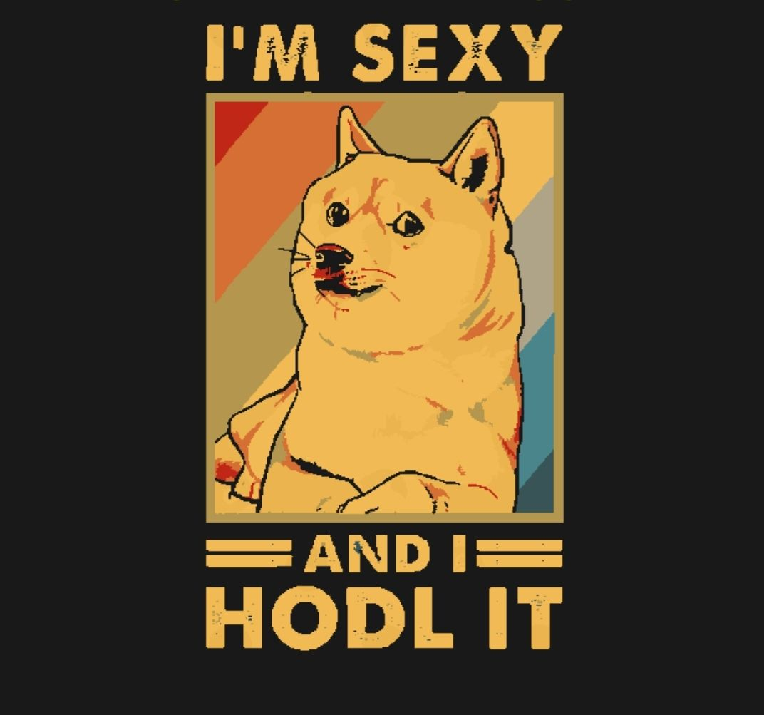 #Dogecoinarmy #HODL #buythedip 🐕💯✈️