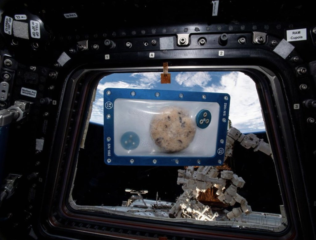 """Join us today (Thurs., Feb. 25) at 6PM ET for the """"Celebrating ISS Technology: Baking Cookies in Space"""" webinar to learn about the culinary challenges associated with long-duration spaceflight and how a Zero-G oven might help astronauts. Register here:"""