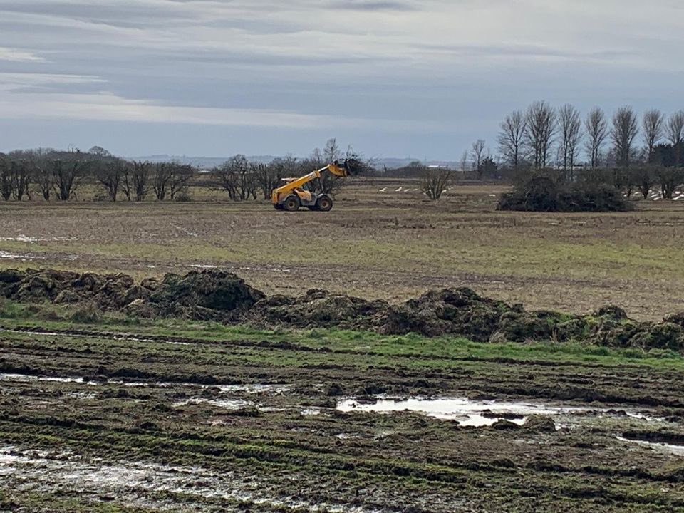 The important hedgerow that lines the track that splits Plot E, was decimated by 'trimming'. It was an opportune time for the tractors to drive in between the hedges & over the ponds containing emerging wildlife…